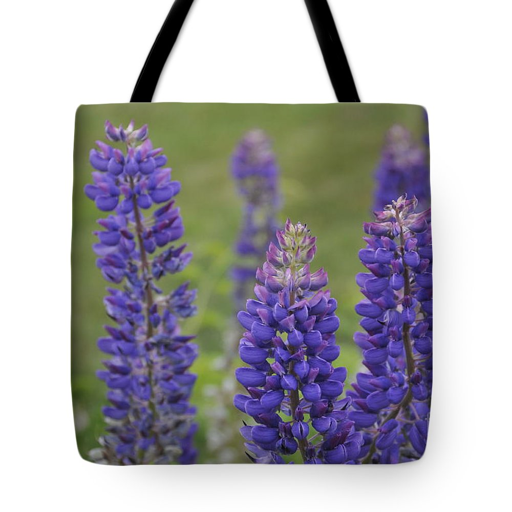 Lupines; Flowers; Purple; Maine; New England Tote Bag featuring the photograph Lupines by Shirley Whitenack