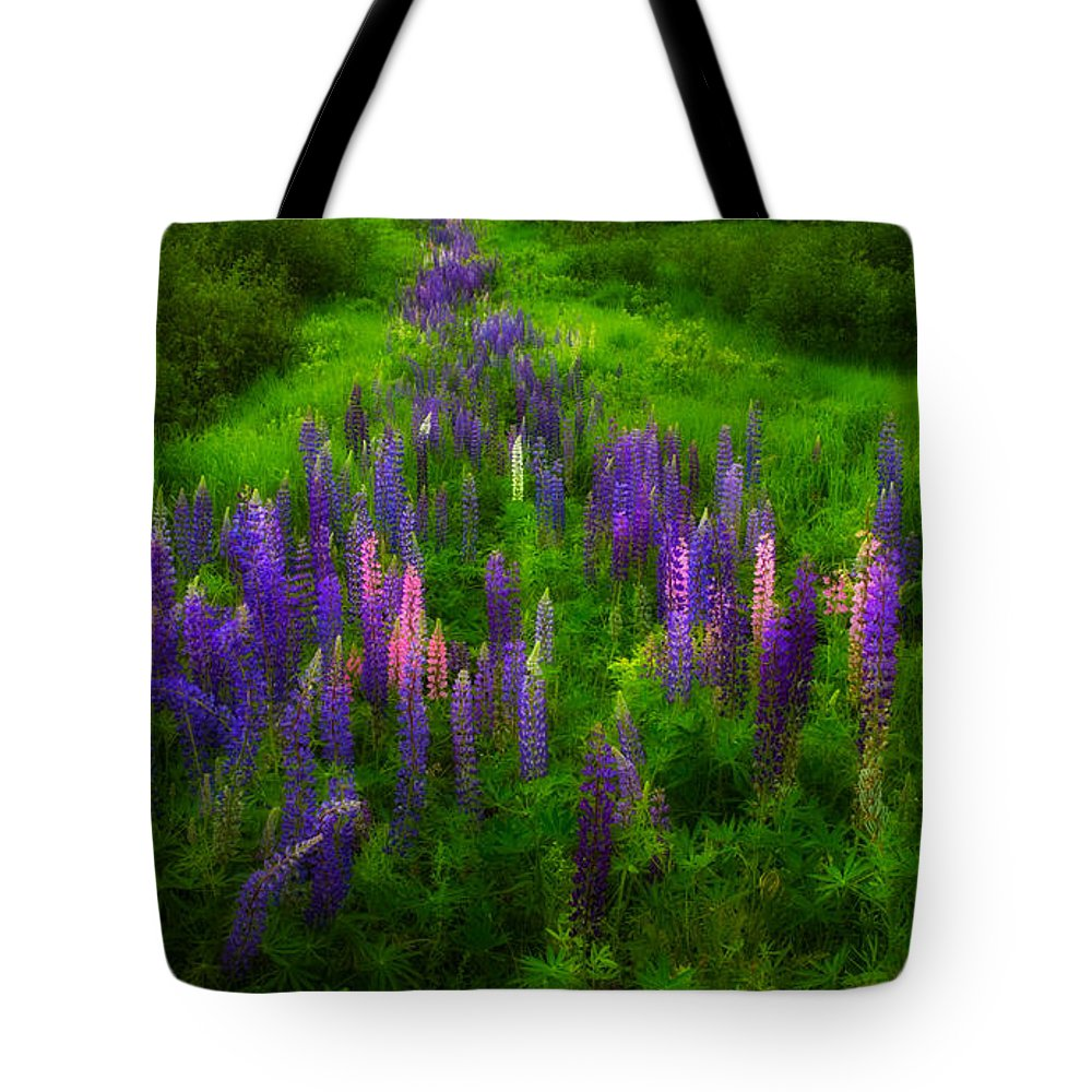 Wildflowers Tote Bag featuring the photograph Lupins Lane by Irwin Barrett