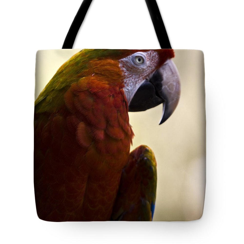Macaw Tote Bag featuring the photograph Macaw by Angel Ciesniarska