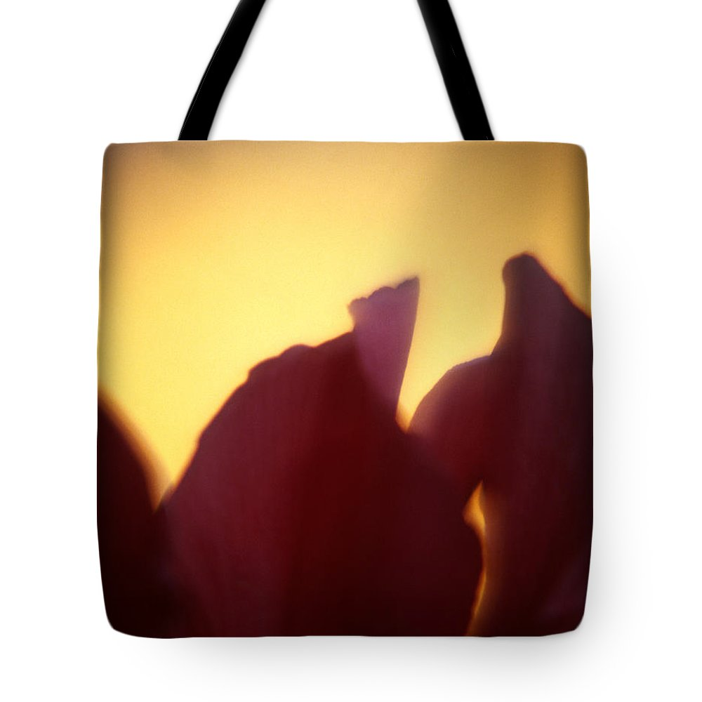 Flower Tote Bag featuring the photograph Macro Flower by Lee Santa