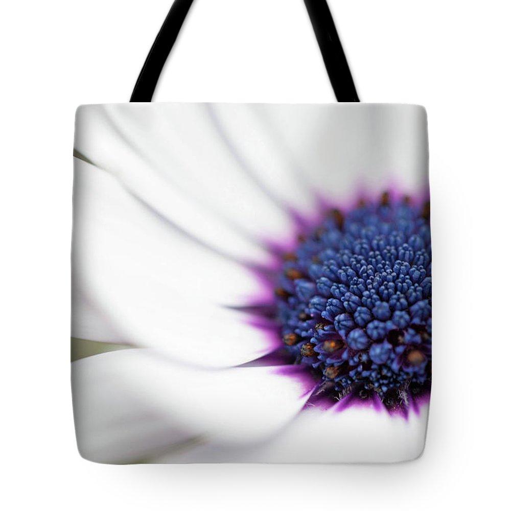 Macro Flower With White Petals And Purpleindigo Center Tote Bag For