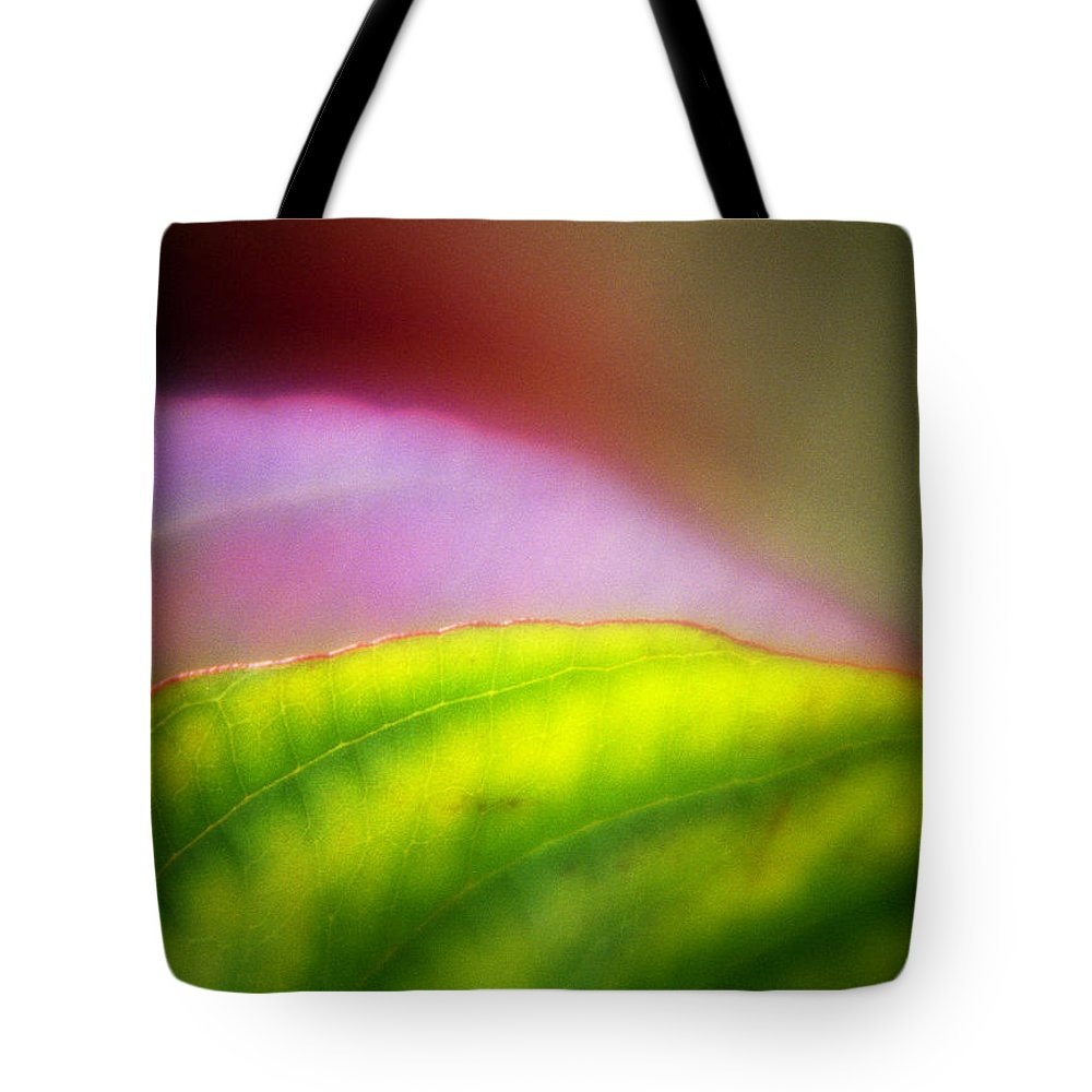 Macro Tote Bag featuring the photograph Macro Leaf by Lee Santa