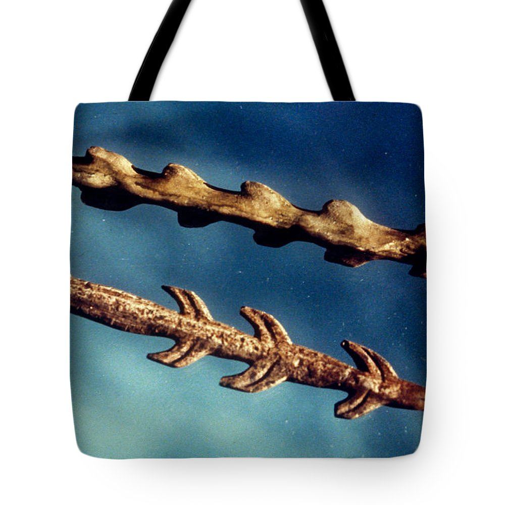 Ancient Tote Bag featuring the photograph Magdalenian Harpoons by Granger