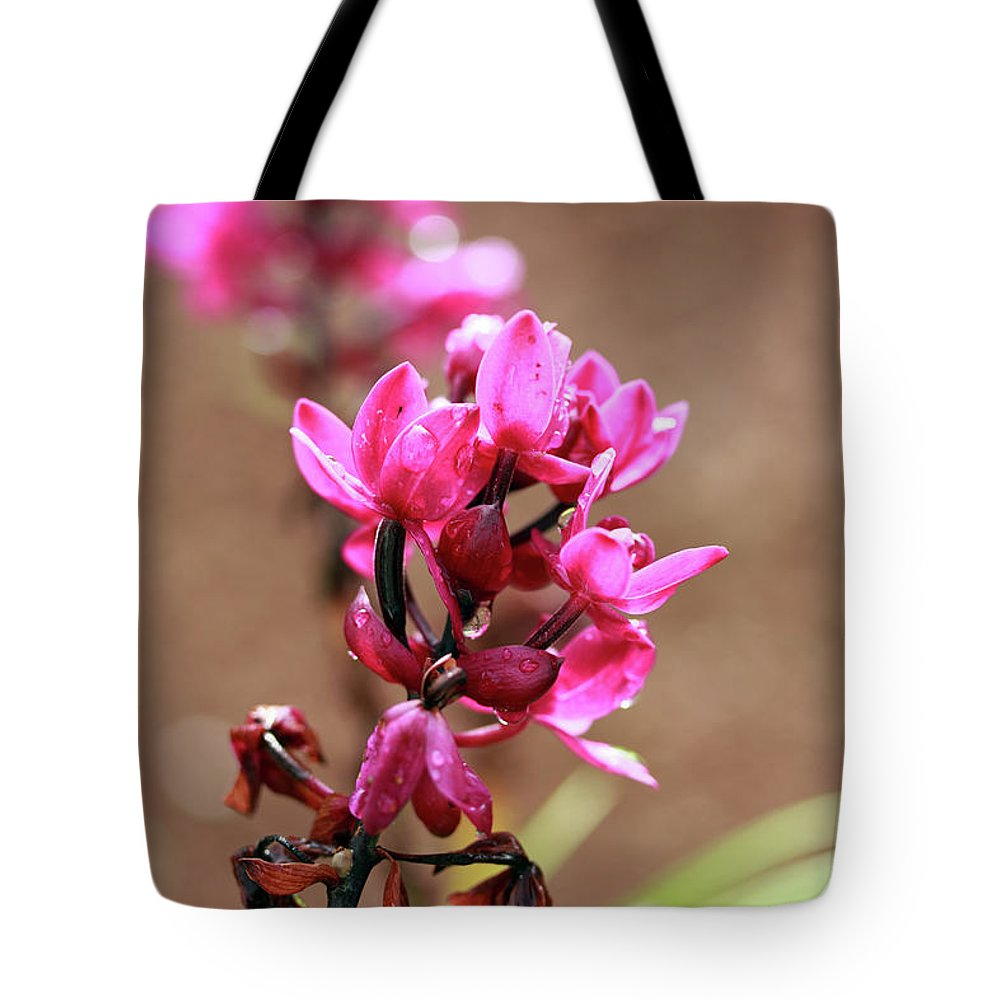Floral Tote Bag featuring the photograph Magenta Splendor by Mary Haber
