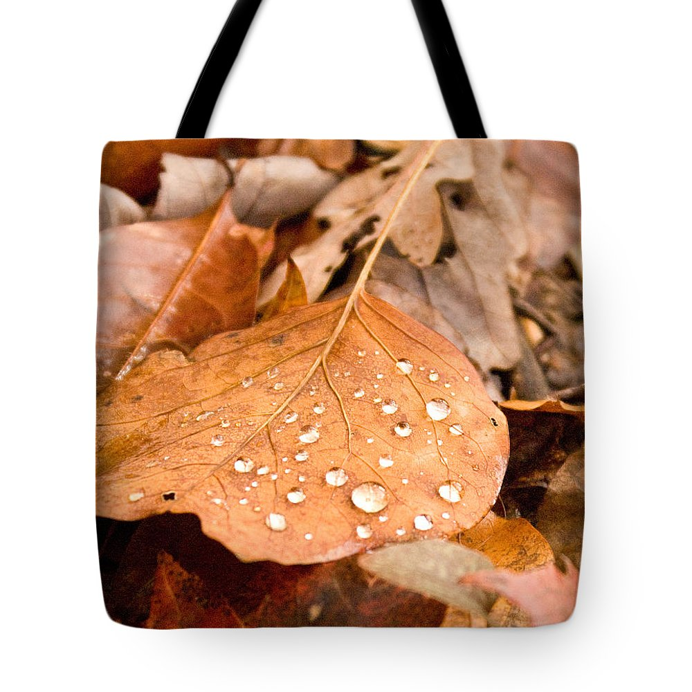 Surface Tote Bag featuring the photograph Magic Of Surface Tension by Douglas Barnett