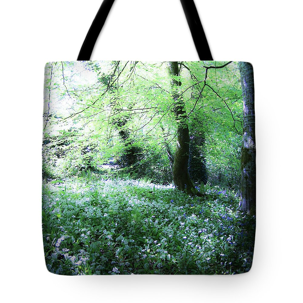 Irish Tote Bag featuring the photograph Magical Forest At Blarney Castle Ireland by Teresa Mucha