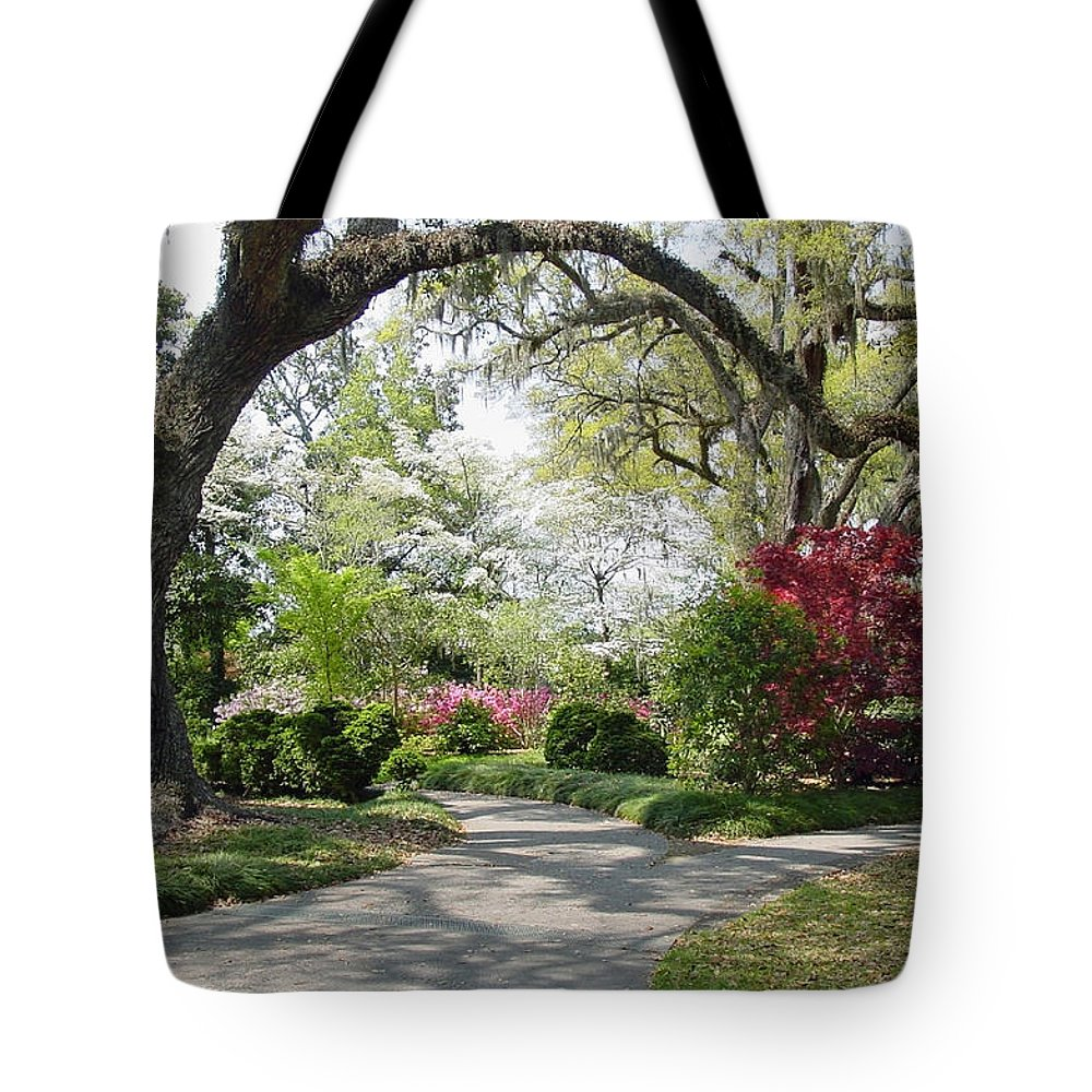 Live Oak Tote Bag featuring the photograph Magical Wonderland by Suzanne Gaff
