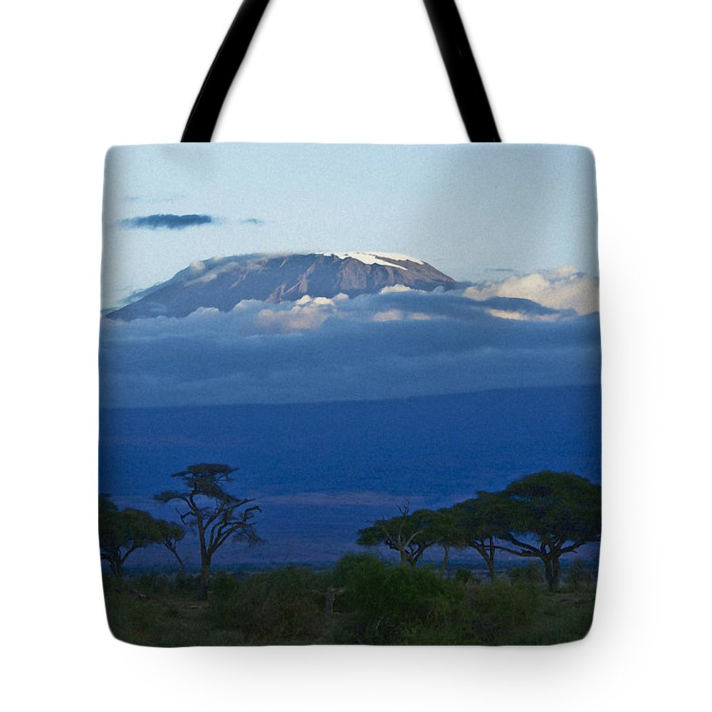 Africa Tote Bag featuring the photograph Magnificent Kilimanjaro by Michele Burgess