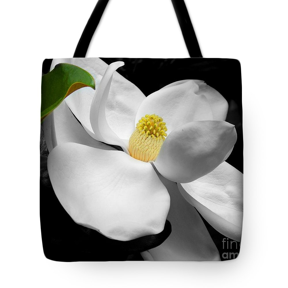 Magnolia Tote Bag featuring the photograph Magnolia Blossom by Jai Johnson