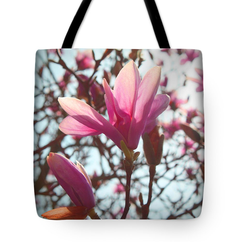 Spring Tote Bag featuring the photograph Magnolia Blossoms by Deborah Napelitano