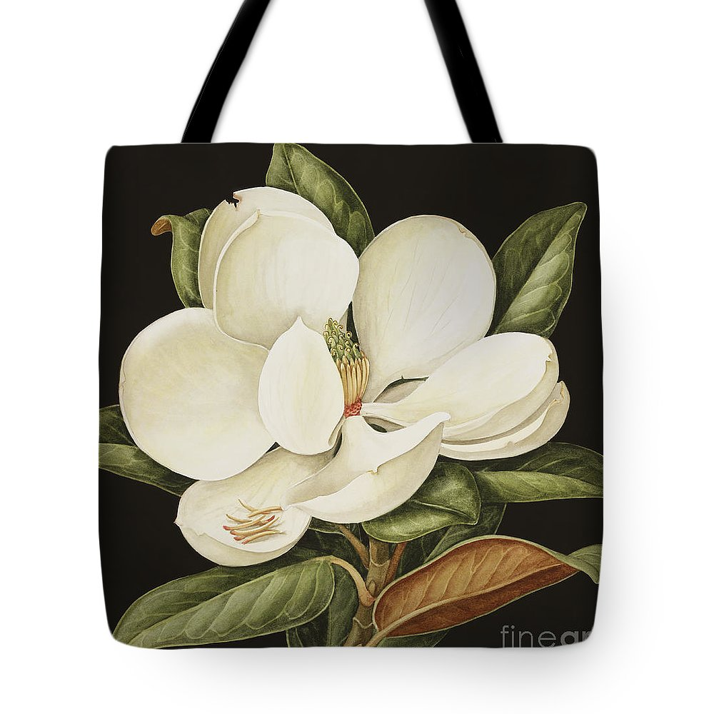 Still-life Tote Bag featuring the painting Magnolia Grandiflora by Jenny Barron