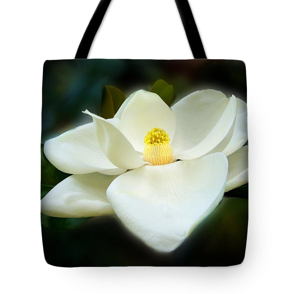 Magnolia Tote Bag featuring the photograph Magnolia In Color by Jai Johnson