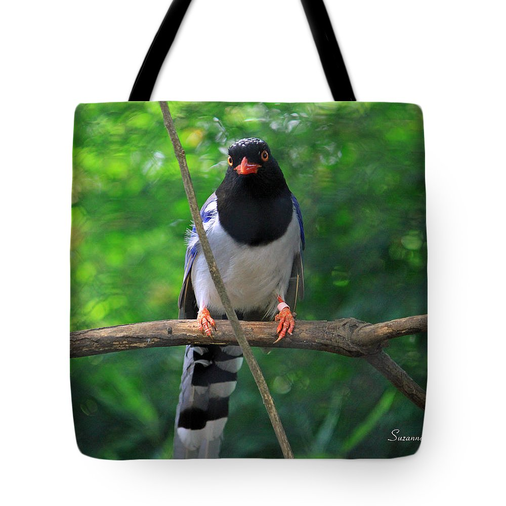Magpie Tote Bag featuring the photograph Magpie I by Suzanne Gaff