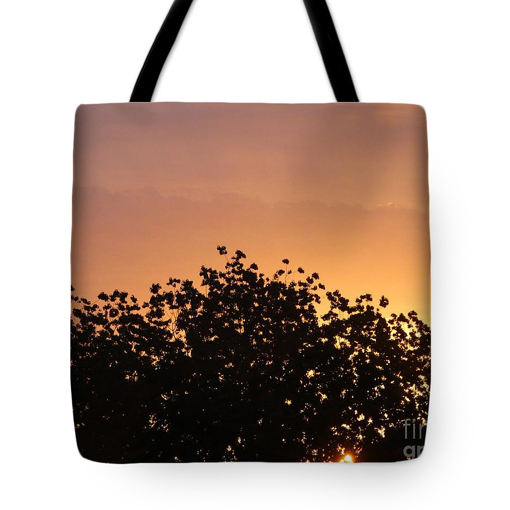 Dawn Tote Bag featuring the photograph Majestic Dawn by Joseph Baril