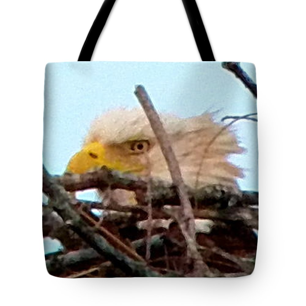 Eagle Tote Bag featuring the photograph Majestic by Gina Welch