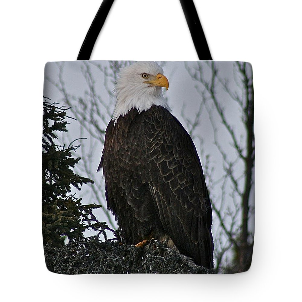 Eagle Tote Bag featuring the photograph Majestic by Rick Monyahan