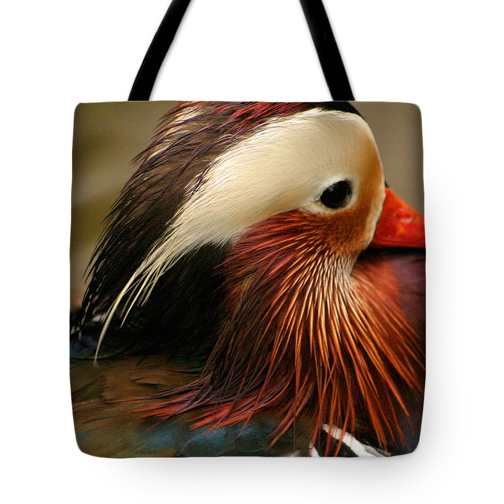 Mandarin Duck Tote Bag featuring the photograph Male Mandarin Duck China by Ralph A Ledergerber-Photography