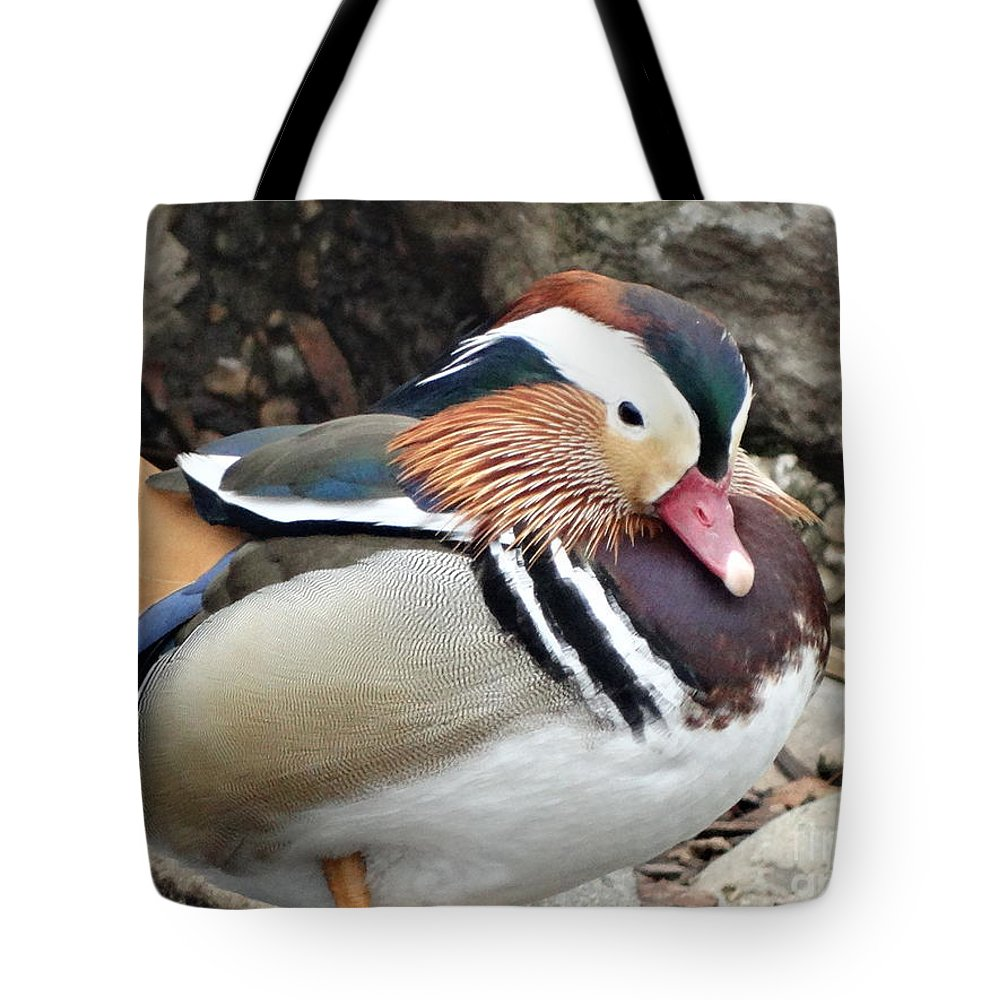 Wood-duck Tote Bag featuring the photograph Male Wood-duck by Shontell Cupler