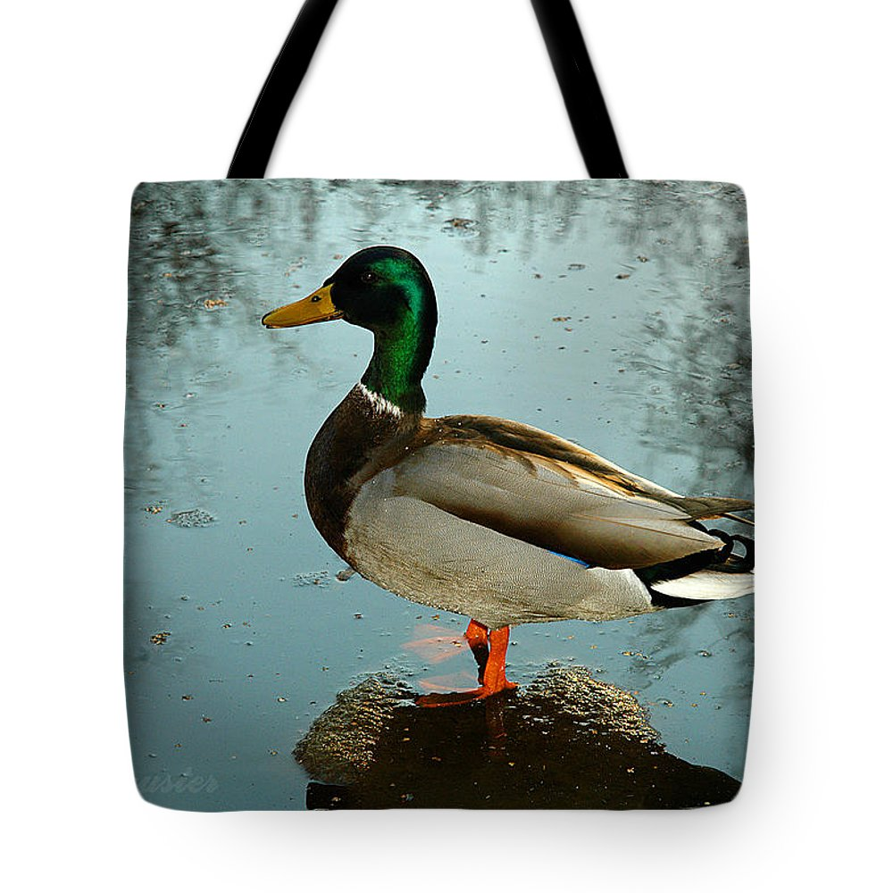 Clay Tote Bag featuring the photograph Mallard by Clayton Bruster