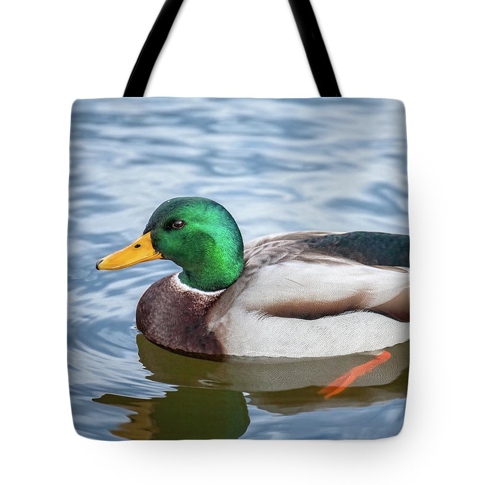 Animals Tote Bag featuring the photograph Mallard Swimming by Leslie Banks