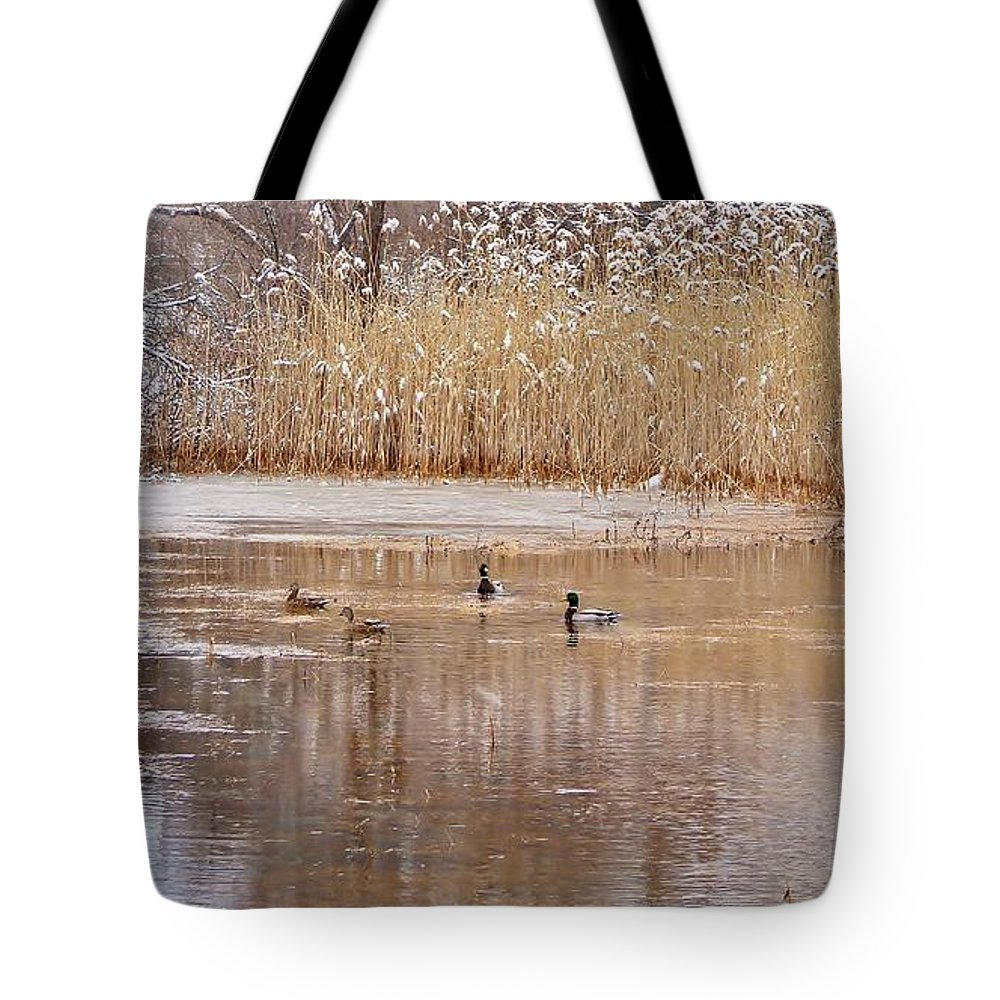 Ducks Tote Bag featuring the photograph Mallards by Scott Hufford