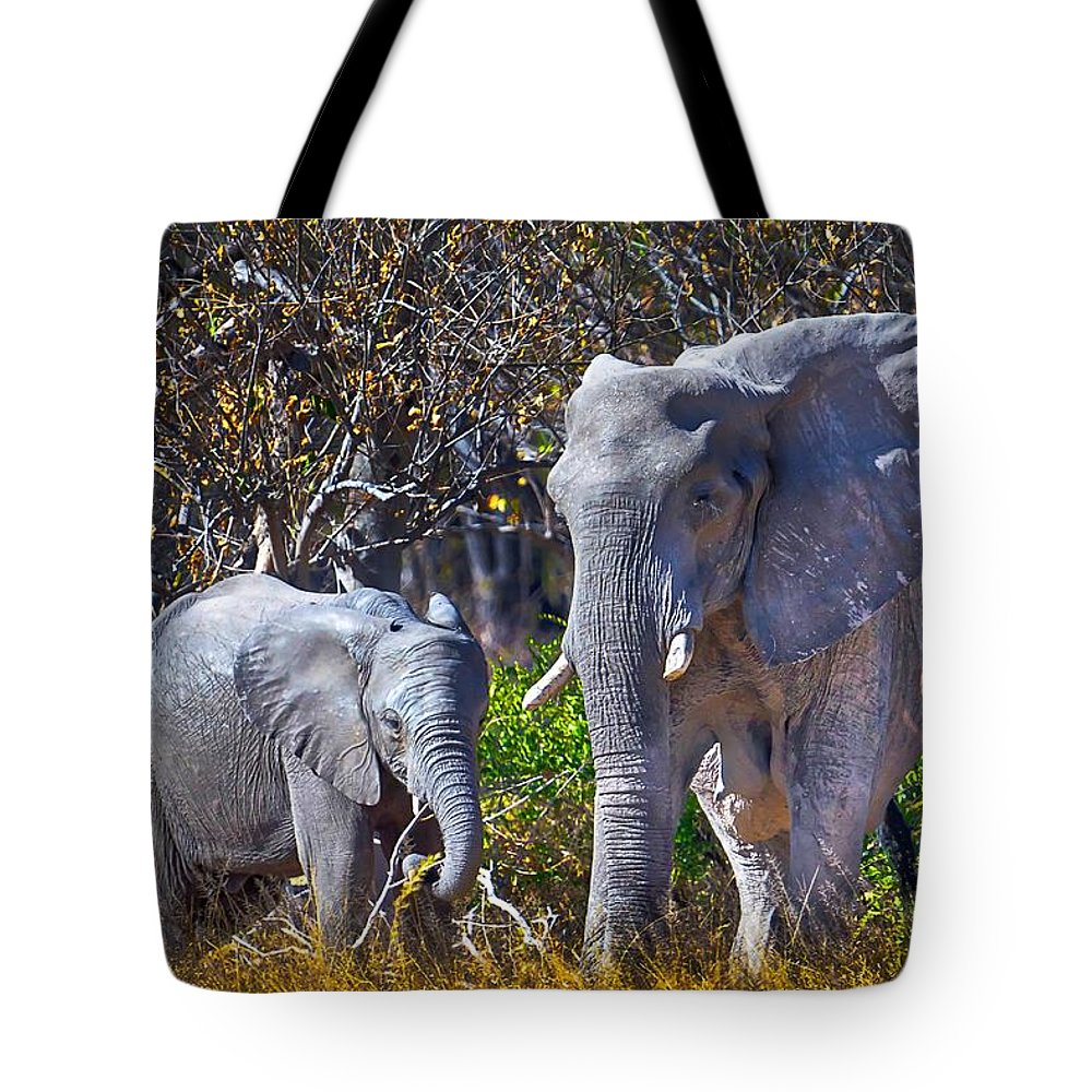 Elephant Tote Bag featuring the photograph Mama And Baby Elephant by Rob Daugherty