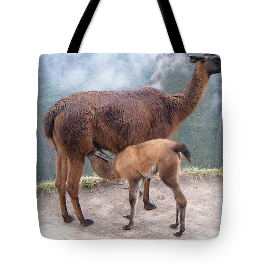 Peru Tote Bag featuring the photograph Mama And Baby by Marsha Elliott