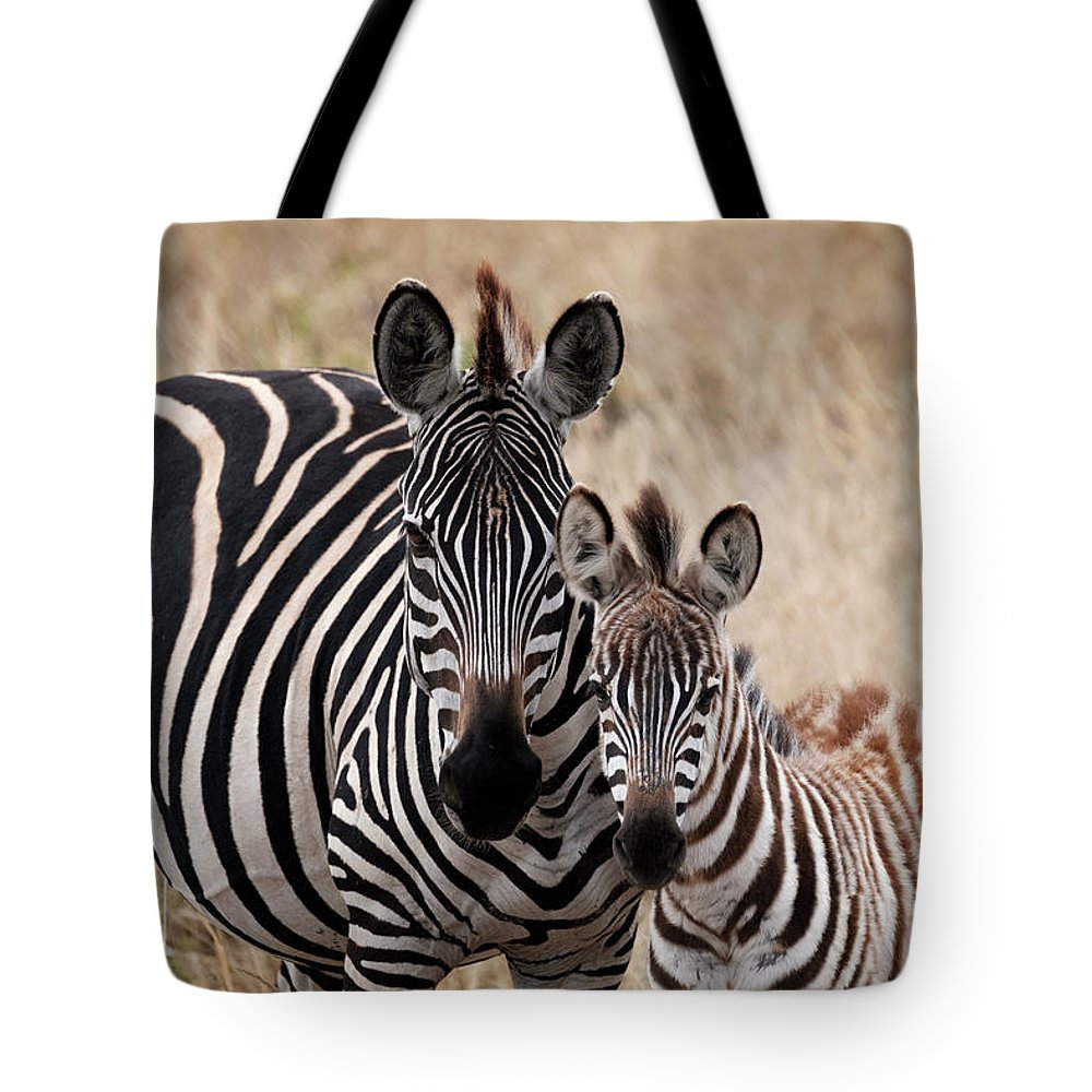 Africa Tote Bag featuring the photograph Mama And Baby Zebra by Mary Lee Dereske