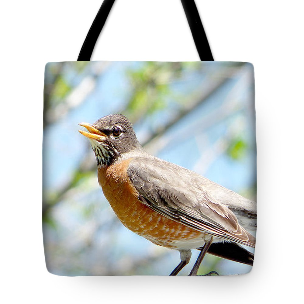 Ron Glaser Tote Bag featuring the photograph Mama Robin 1 by Ron Glaser