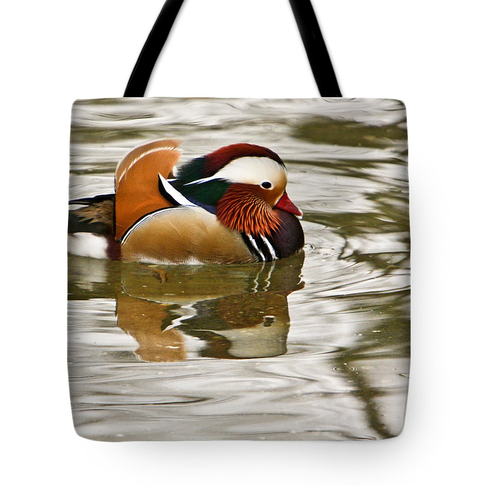 Mandrin Duck Swimming Tote Bag featuring the photograph Mandrin Duck Going For A Swim by Douglas Barnett