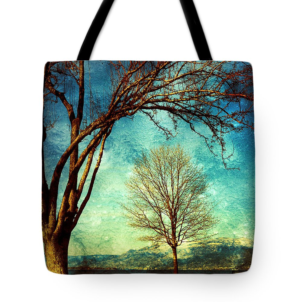 Tree Tote Bag featuring the photograph March 5 2010 by Tara Turner