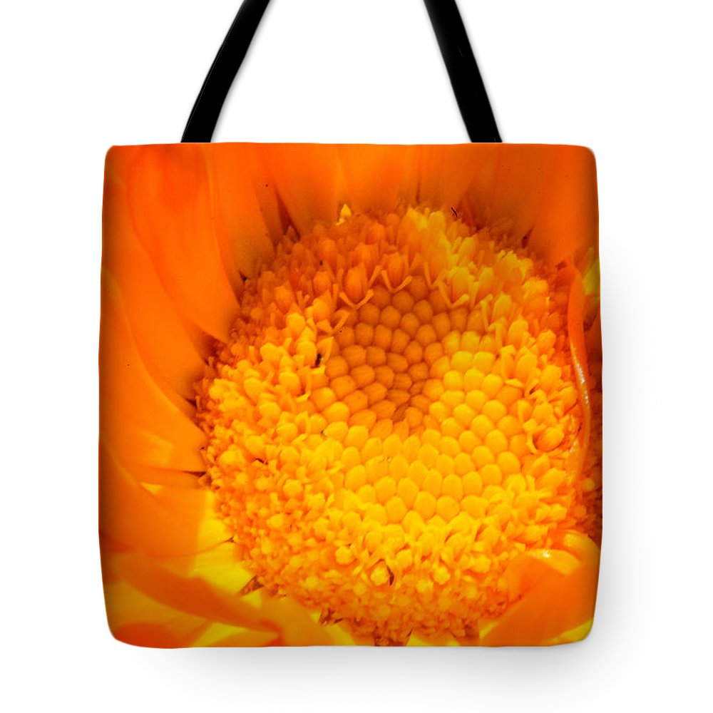 Asteraceae Tote Bag featuring the photograph Marigold Closeup by Steve Samples