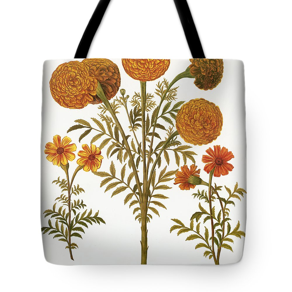 1613 Tote Bag featuring the photograph Marigolds, 1613 by Granger
