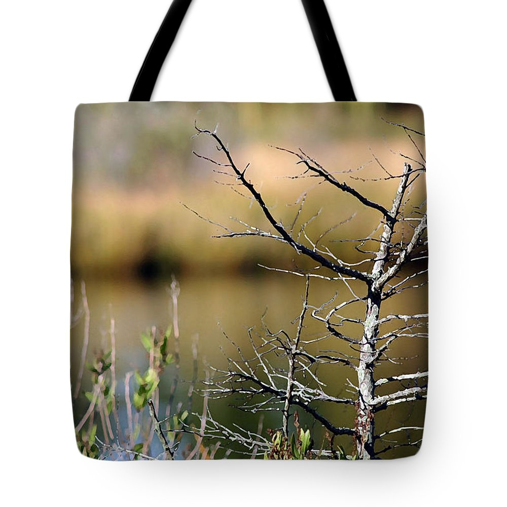 Marshland Tote Bag featuring the photograph Marsh Afternoon by Mary Haber