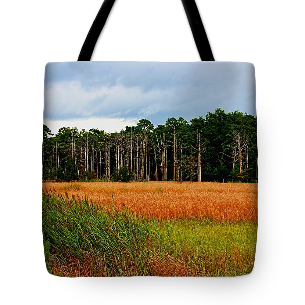 Gator Hole Tote Bag featuring the photograph Marsh And Trees by Rand Wall