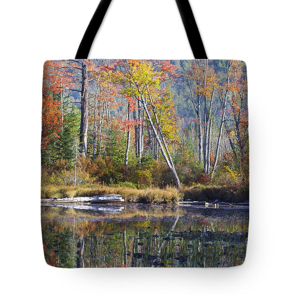 Lancaster Tote Bag featuring the photograph Martin Meadow Pond - Lancaster New Hampshire by Erin Paul Donovan