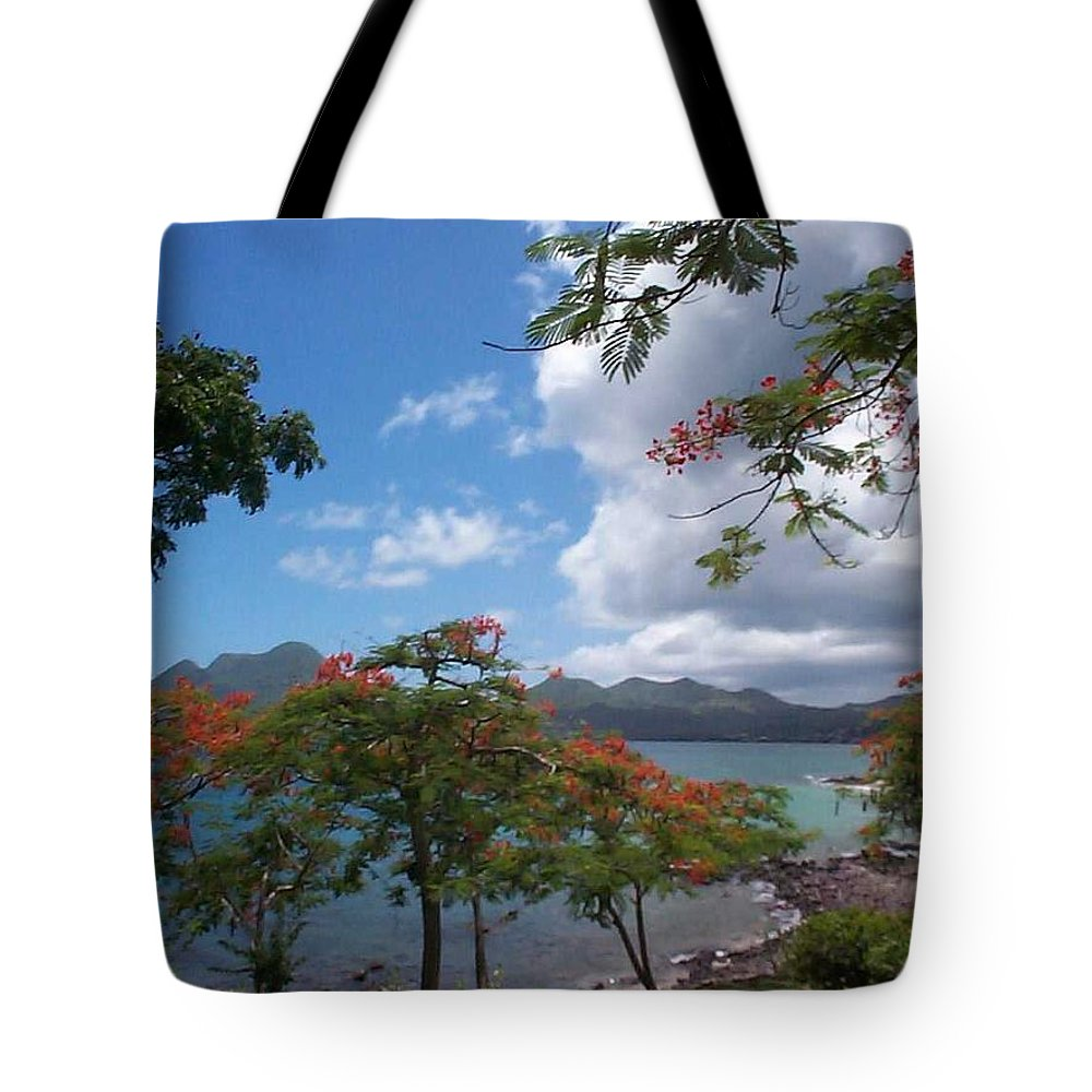 Donation Tote Bag featuring the photograph Martinique by Mary-Lee Sanders