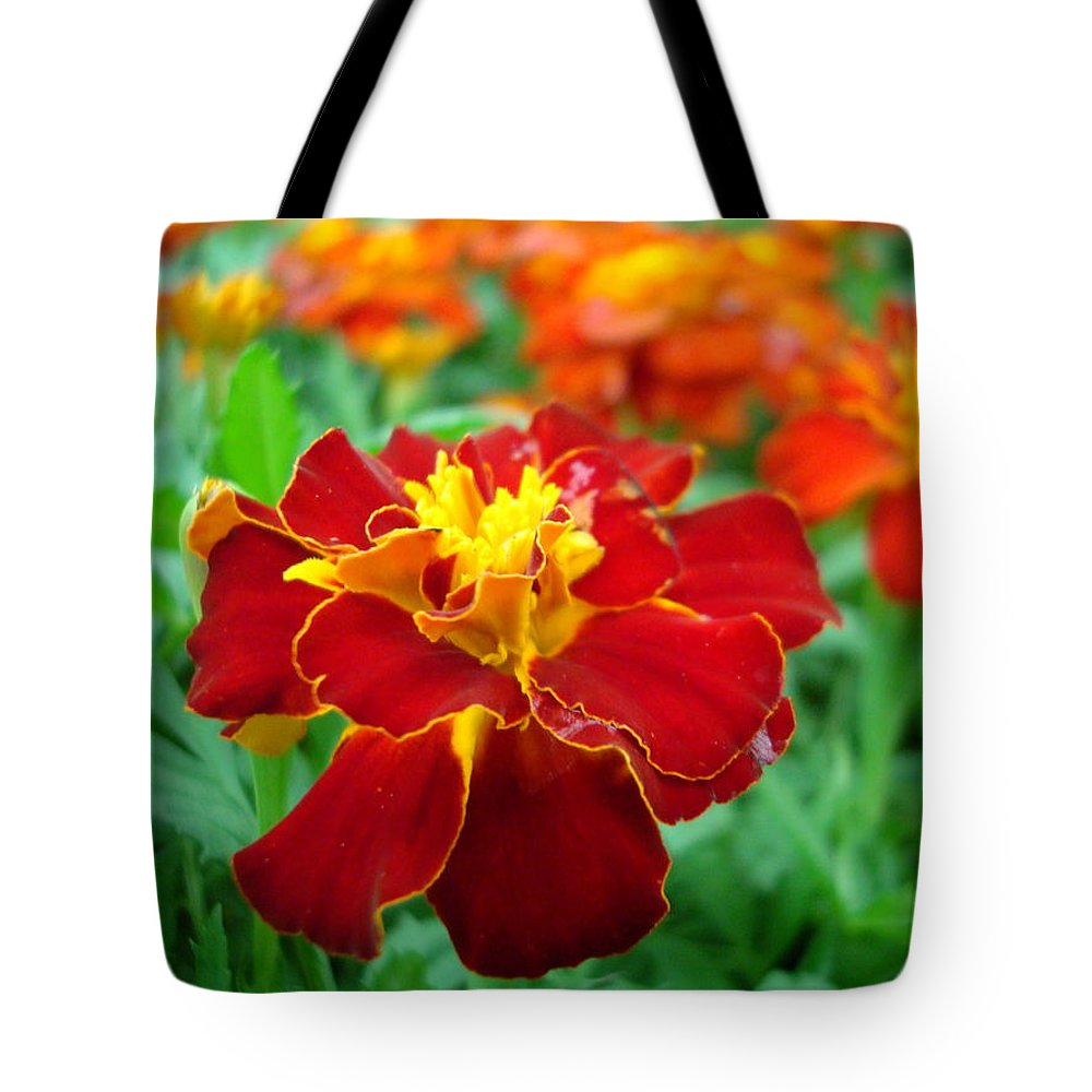 Marigold Tote Bag featuring the photograph Mary Gold by Kathy Bucari