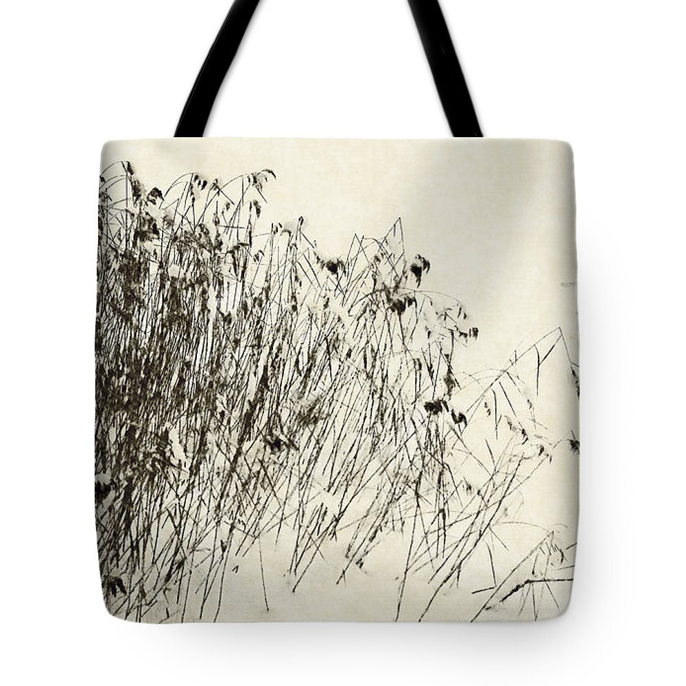 Relaxation Tote Bag featuring the photograph Matsuo Basho Remembering by Alexander Svetlov