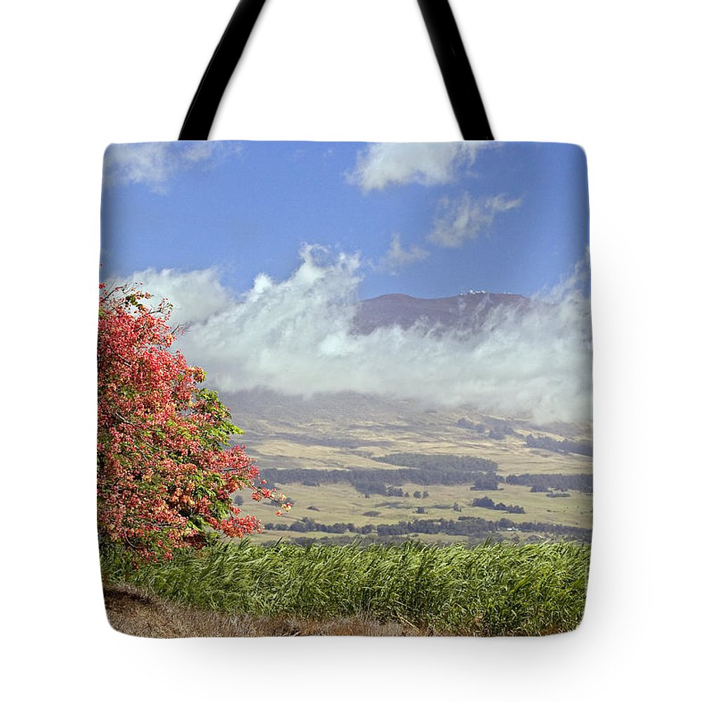 Afternoon Tote Bag featuring the photograph Maui Science City by Dave Fleetham - Printscapes