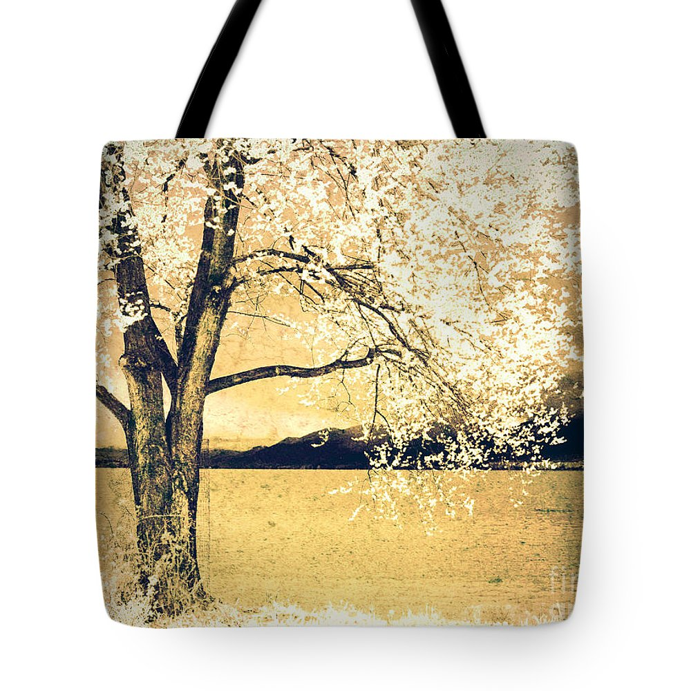 Tree Tote Bag featuring the photograph May 5 2010 by Tara Turner