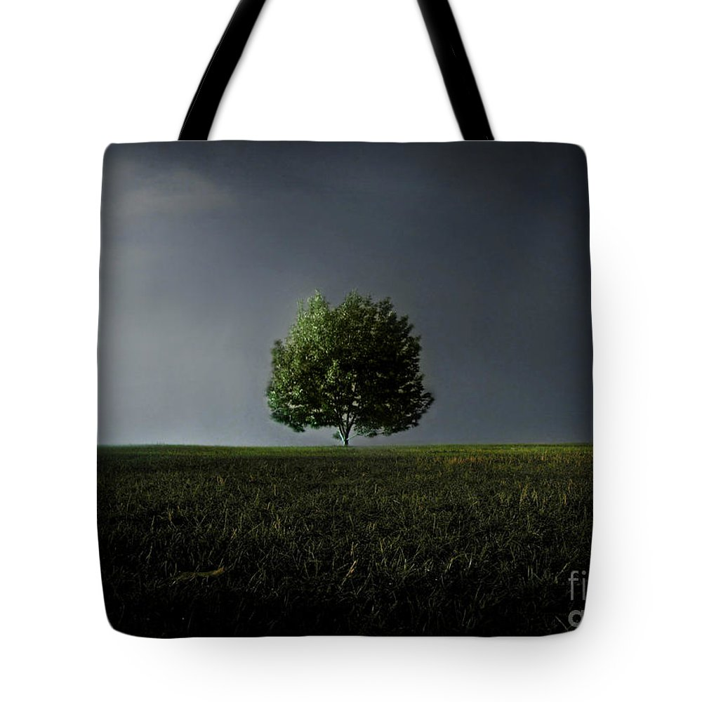 Blue Tote Bag featuring the photograph Maybe This Year Will Be Better Than The Last by Dana DiPasquale