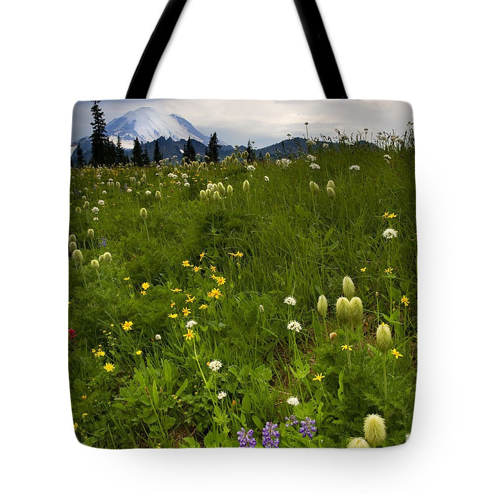 Rainier Tote Bag featuring the photograph Meadow Beneath The Storm by Mike Dawson