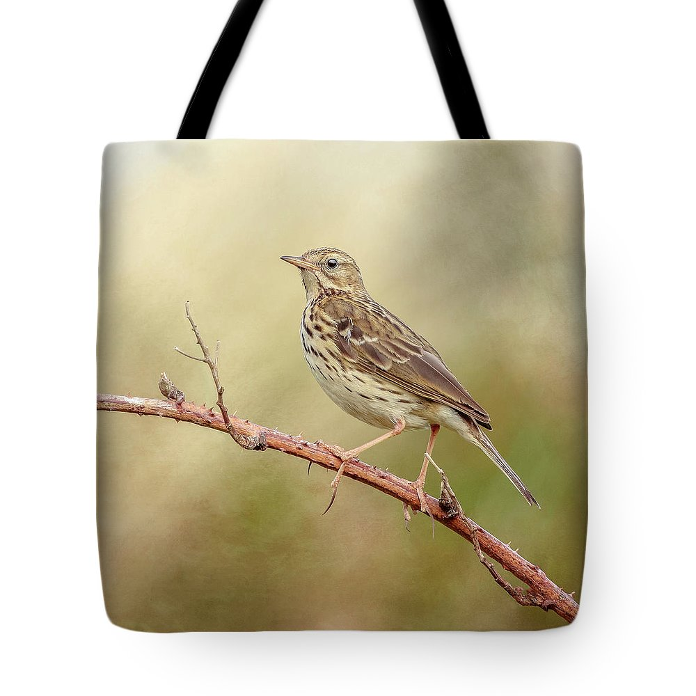 Meadow Pipit Tote Bag featuring the photograph Meadow Pipit by Roy McPeak