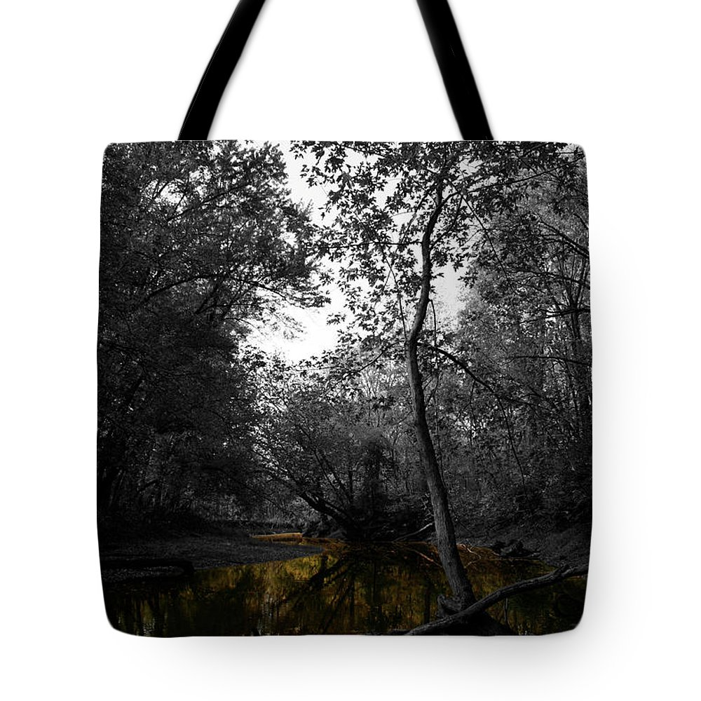 River Tote Bag featuring the photograph Meander by Dylan Punke
