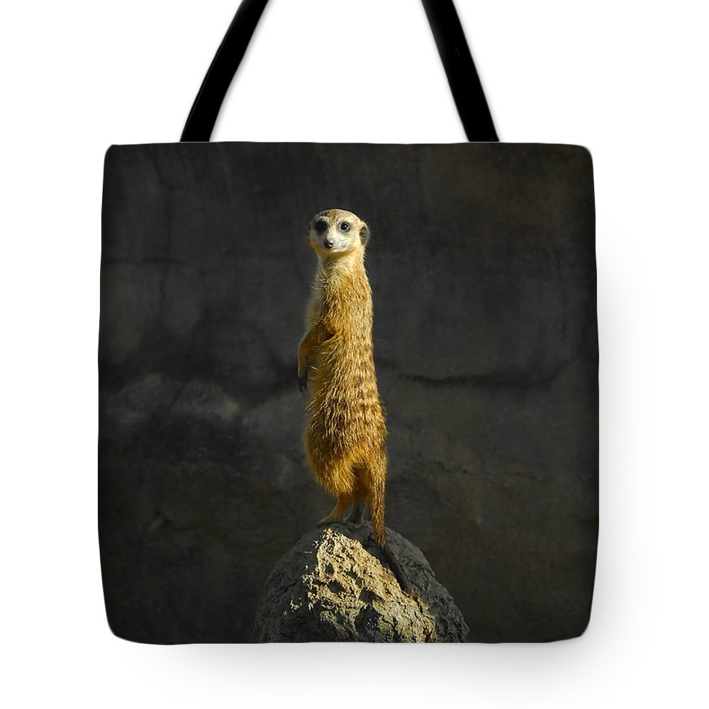 Meerkat Tote Bag featuring the photograph Meerkat On The Watch by David Lee Thompson