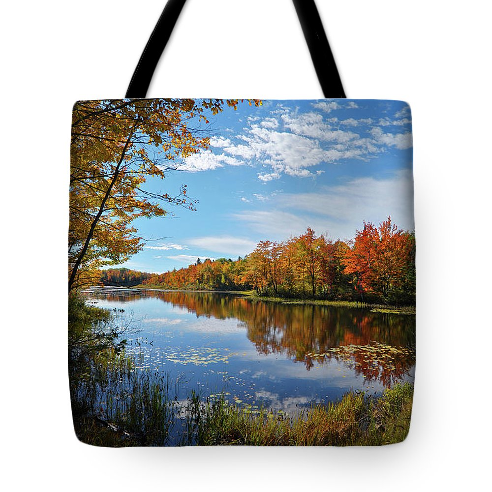 Maine Tote Bag featuring the pyrography Mercer Bog by Kevin Couture