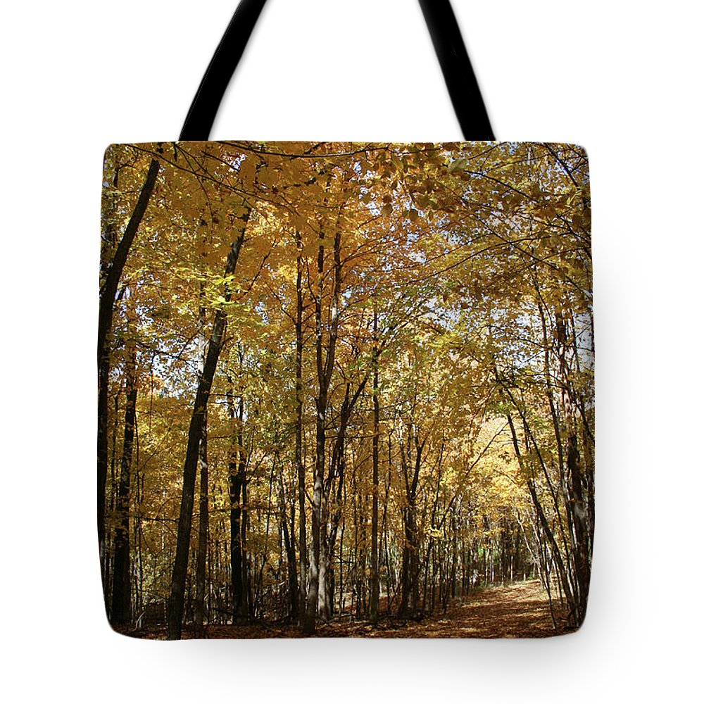 Merwin October Shadows Tote Bag featuring the photograph Merwin October Shadows by Dylan Punke