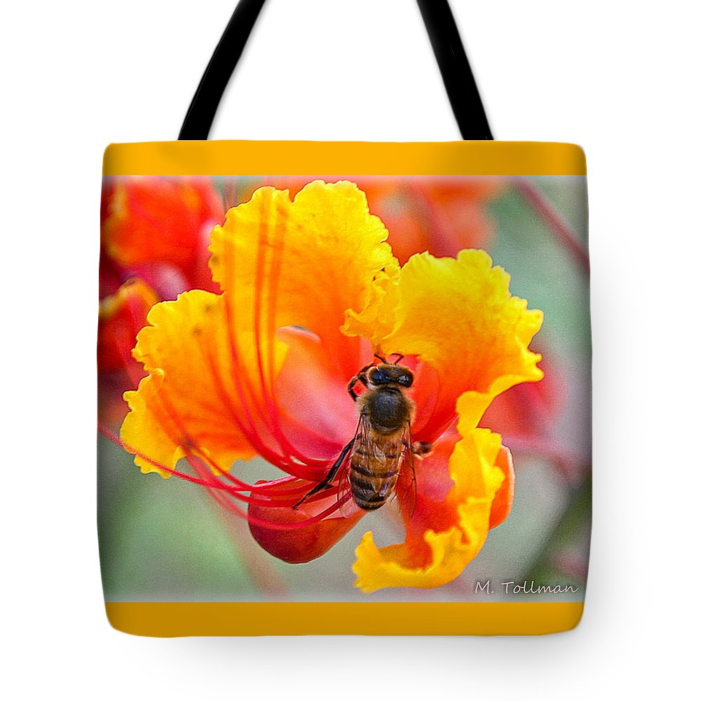 Mexican Bird Of Paradise Tote Bag featuring the digital art Mexican Bird Of Paradise by Maureen Tollman