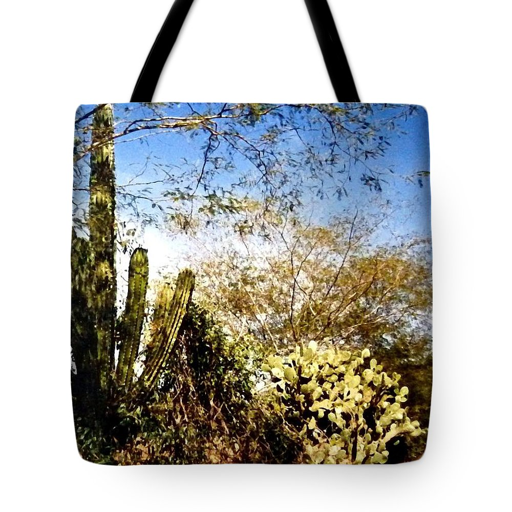 Mexico Tote Bag featuring the photograph Mexican Country Road by Will Borden